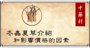 【冬蟲夏草】基本介紹,了解影響價格的因素